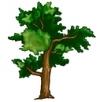 برای خرید نهال درخت و درختچه فضای سبز کلیک کنید